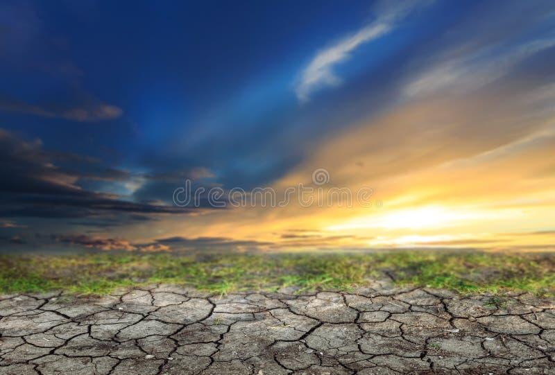 在日落和旱田前的蓝天 免版税库存图片