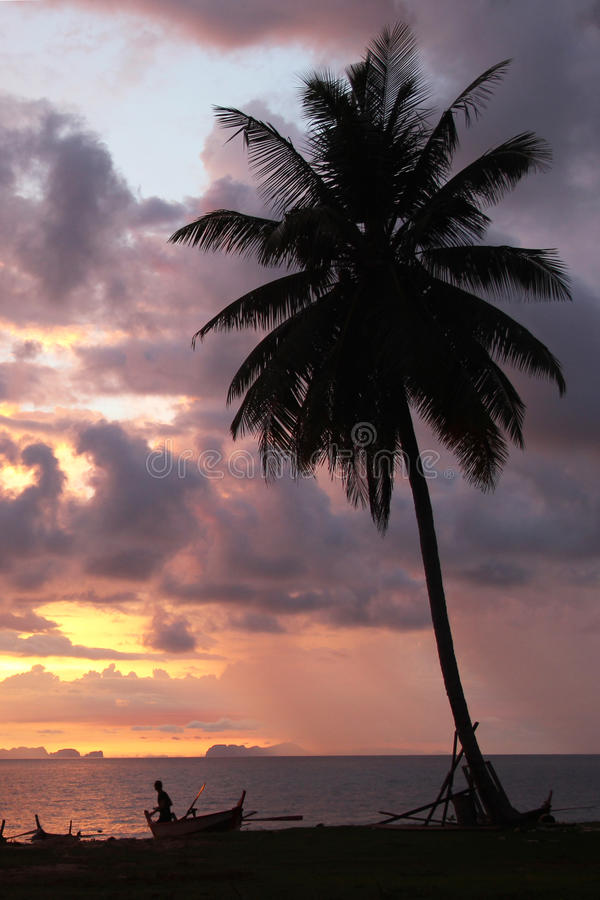 在日落天空和海有棕榈树的和小船的看法在海滩 免版税库存图片