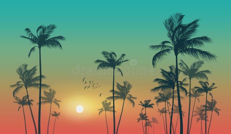 在日落或日出的异乎寻常的热带棕榈树 高度detaile 库存例证