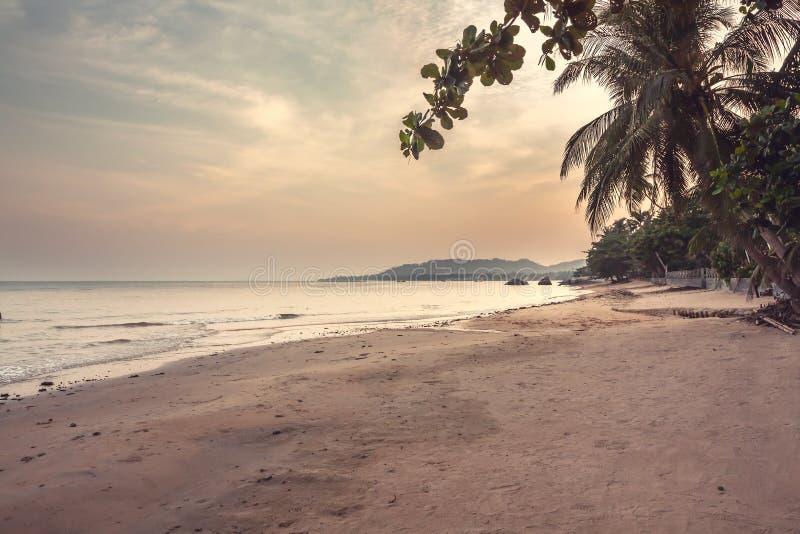 在日落有美好的风景看法在海和海岸线期间的离开的热带海滩风景与棕榈树和日落天空 免版税库存图片