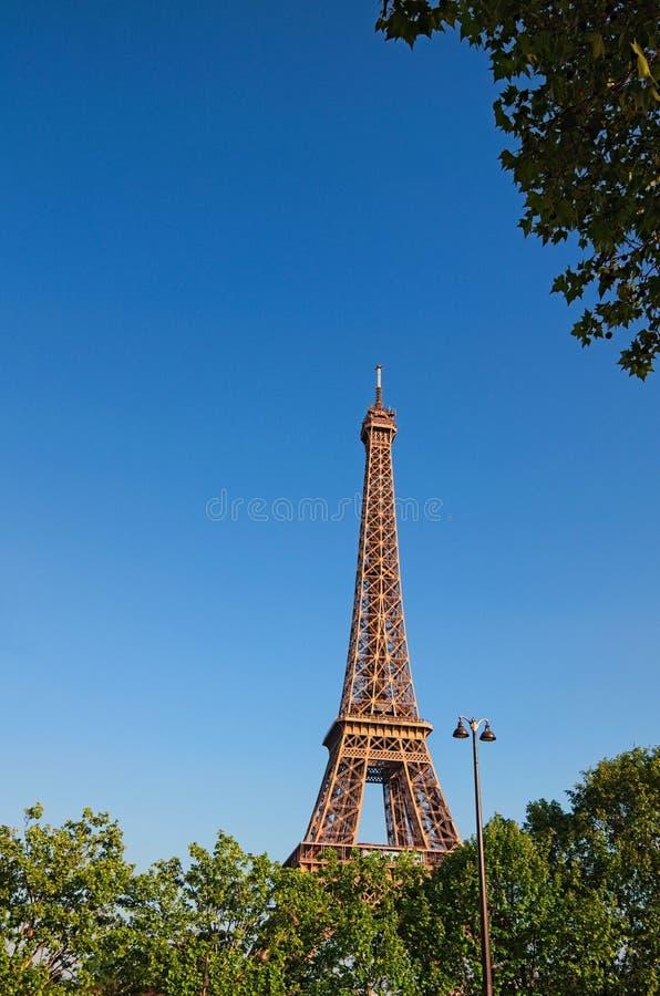 在日落期间,有春天绿色的美丽的艾菲尔铁塔离开 法国巴黎 免版税库存图片