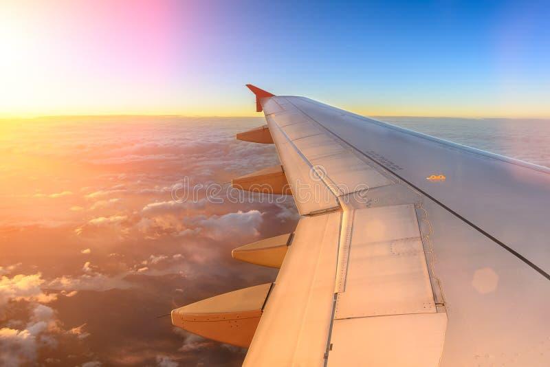 在日落期间,飞机飞行从飞机的鸟瞰图在树荫云彩上的和天空飞行 从平面窗口的看法 免版税库存图片