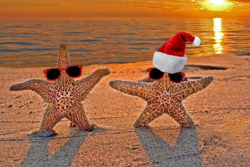在日落海滩的圣诞节海星 免版税库存照片