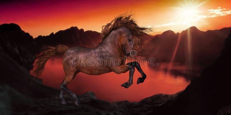 在日落的一匹马 皇族释放例证