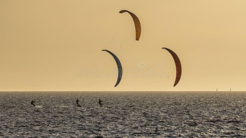 在日落的三kitesurfers在费利曼图市海滩前面,澳大利亚西部 库存照片