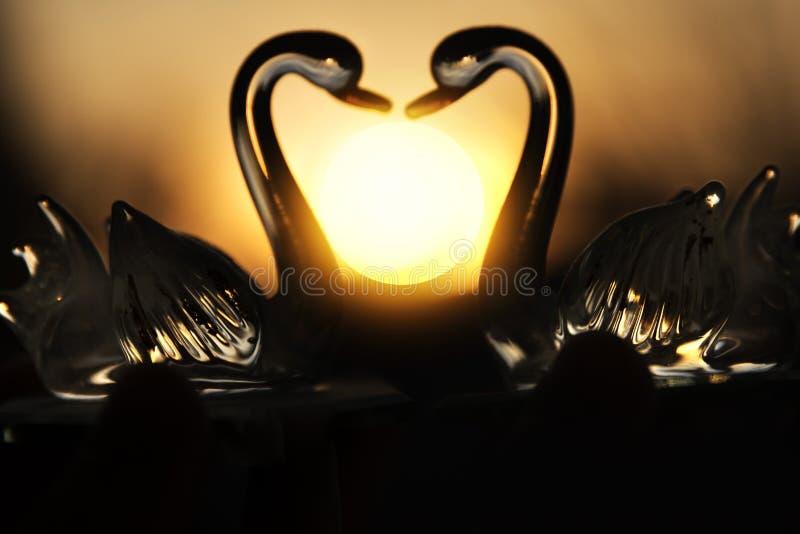 在日落的两只玻璃天鹅以心脏的形式 库存照片