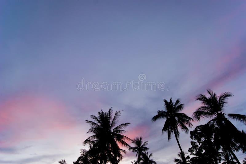 在日落的五颜六色的天空 库存图片