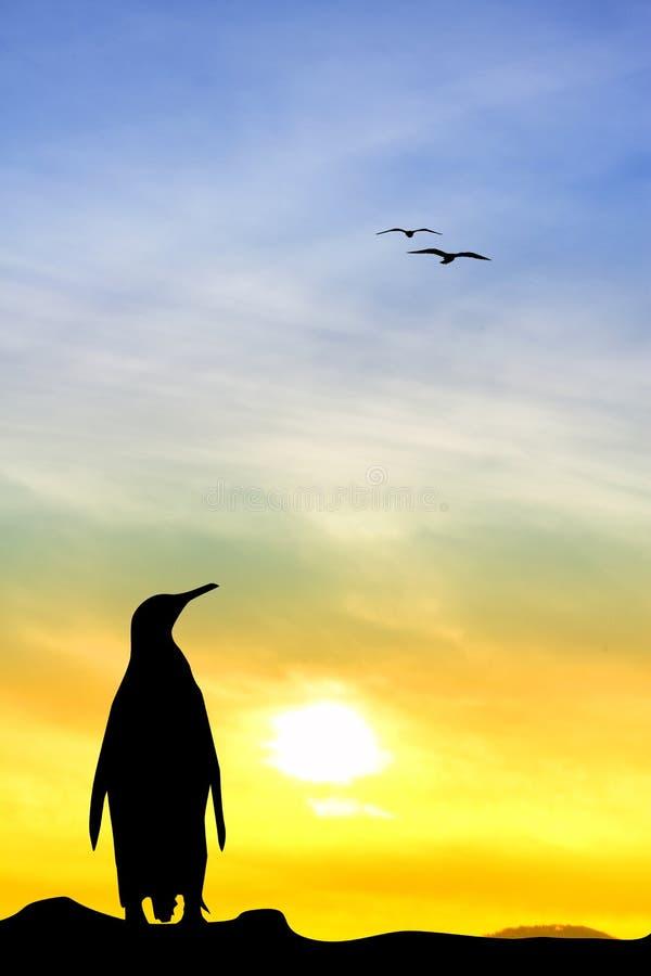 在日落的企鹅 向量例证
