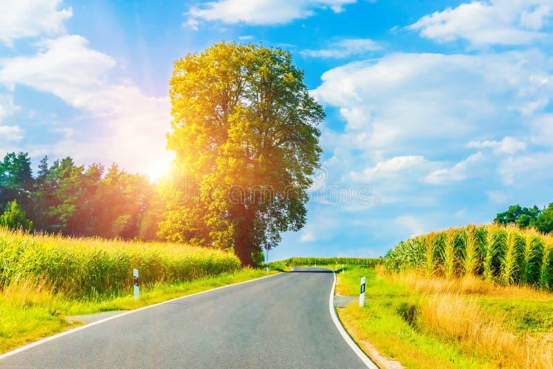在日落的农村弯曲道路 免版税图库摄影