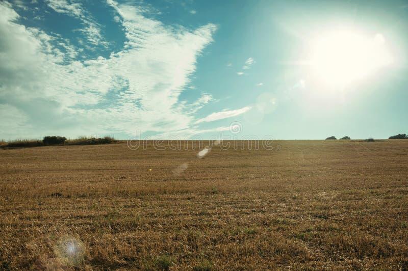 在日落的农村秸杆报道的风景和领域 库存照片