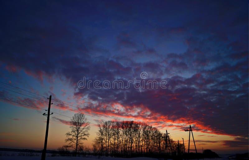 在日落的冬天 免版税库存照片
