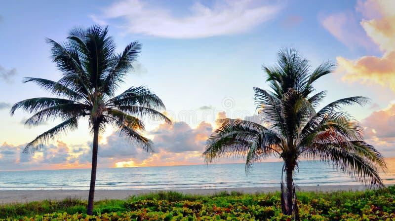 在日落的南佛罗里达海滩提出镇静平静沙子&海浪 库存照片