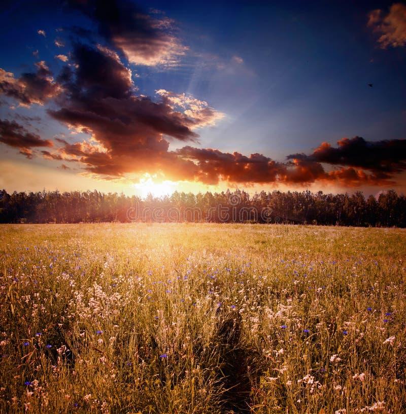 在日落的域 免版税图库摄影