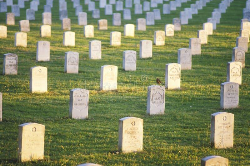 在日落的墓碑 库存图片