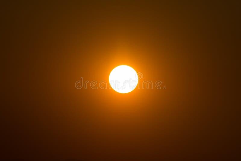 在日落的太阳 免版税库存图片