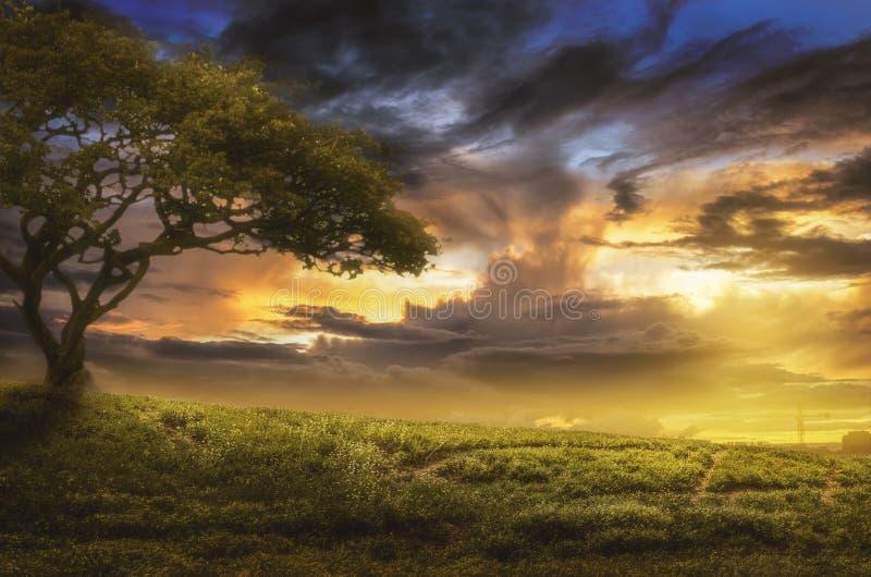 在日落的小山 免版税库存图片