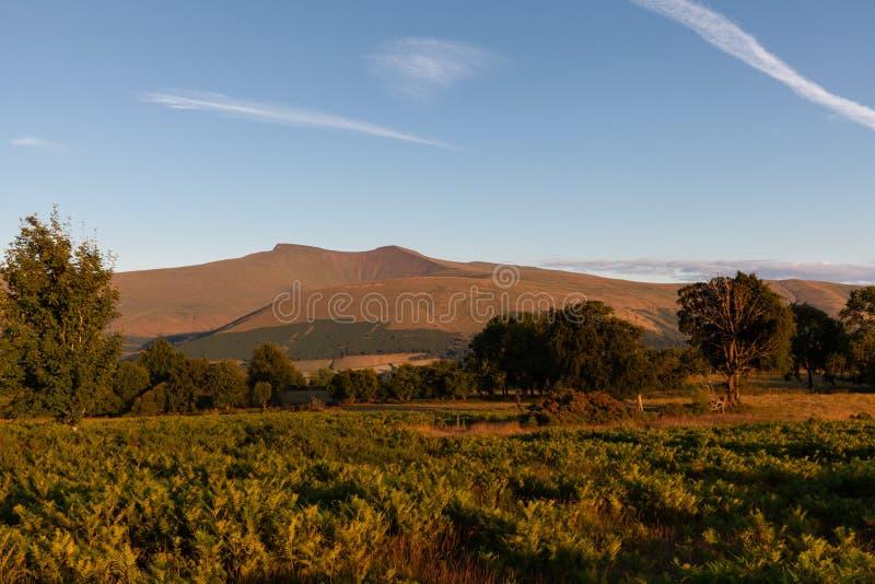 在日落的布雷肯比肯斯山Nationalparks威尔士风景 库存照片