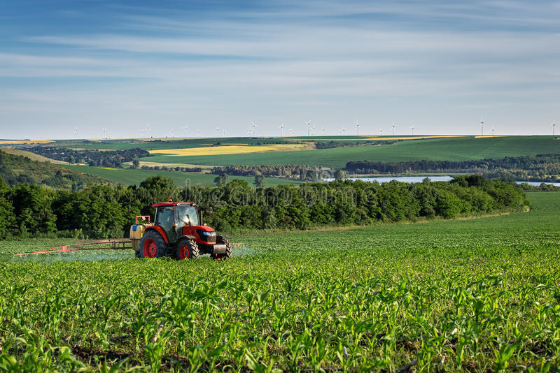 在日落的拖拉机喷洒的麦地 免版税库存图片