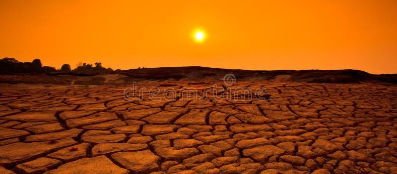 在日落的旱田背景 免版税库存图片