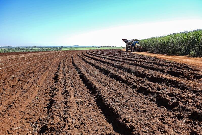 在日落的机械收获的甘蔗领域在圣保罗巴西-在土路的拖拉机在被收获的领域和甘蔗之间 免版税图库摄影