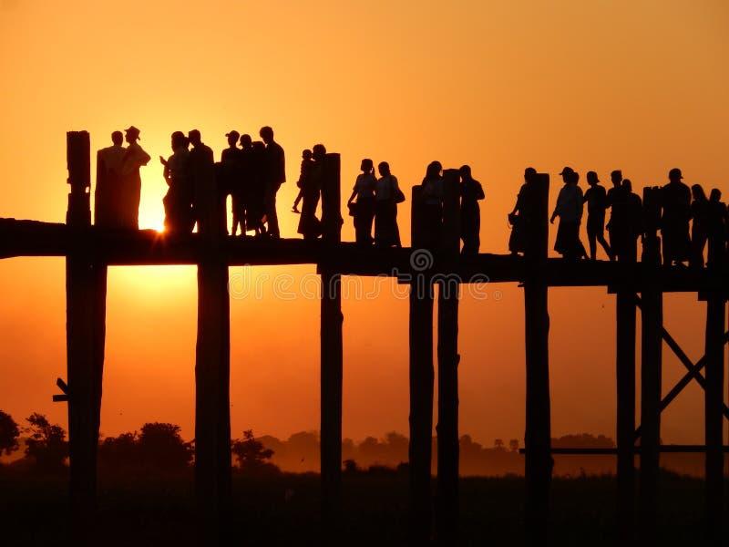 在日落的柚木树桥梁 免版税库存图片