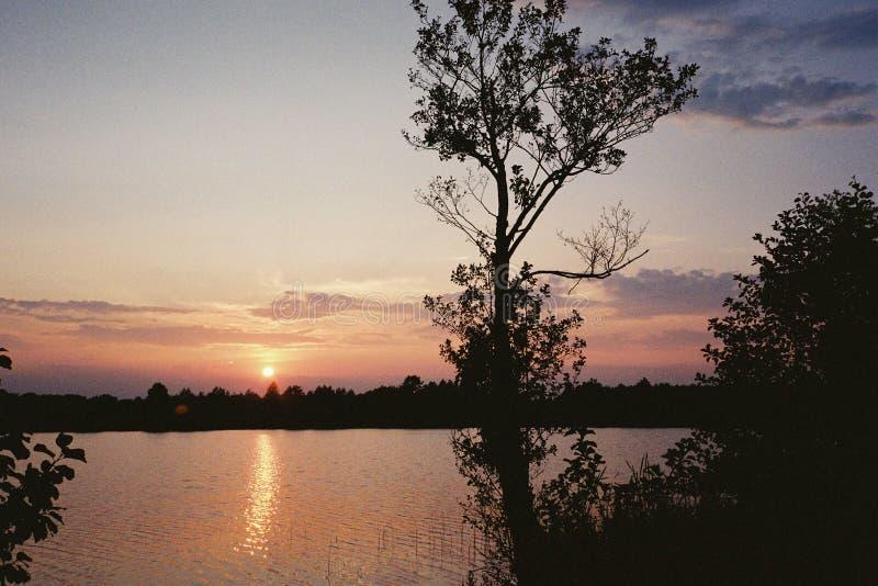 在日落的桃红色天空在湖 免版税库存图片