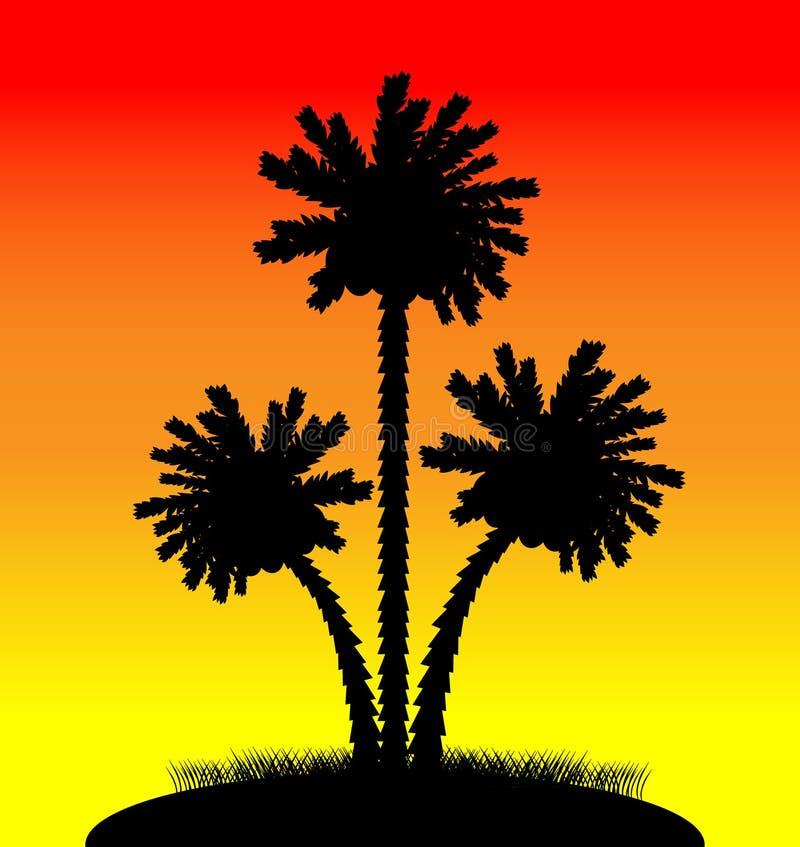 在日落的棕榈树 库存例证