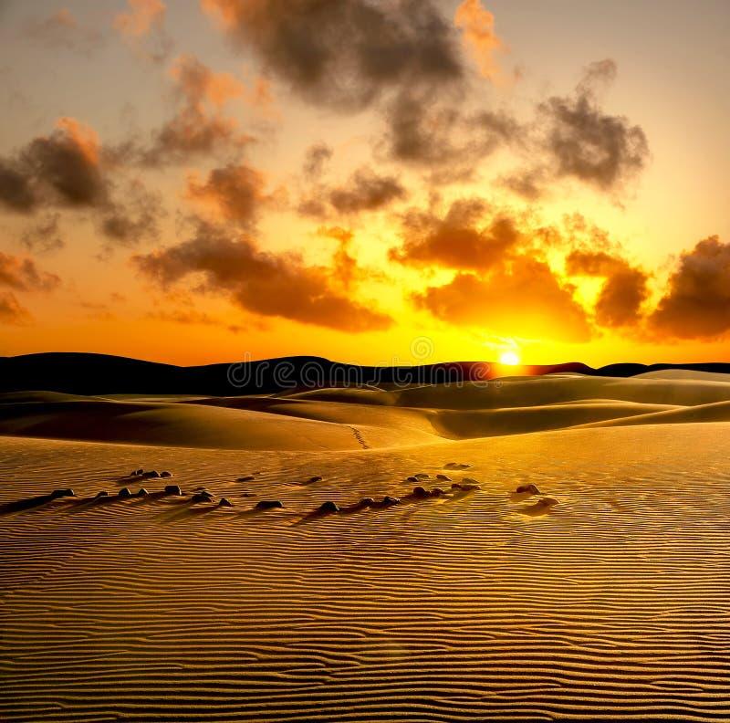 在日落的沙丘 Maspalomas,大加那利岛,西班牙 免版税库存照片