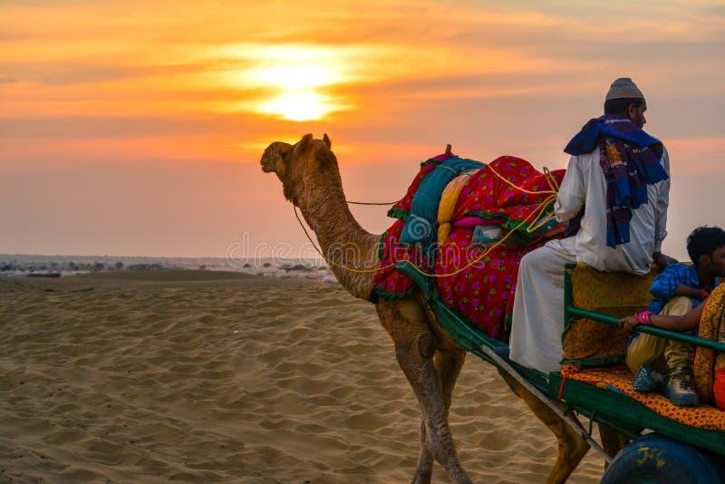 在日落的沙漠徒步旅行队在拉贾斯坦 免版税库存照片