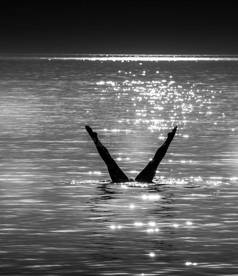 在日落的潜水剪影 免版税库存照片
