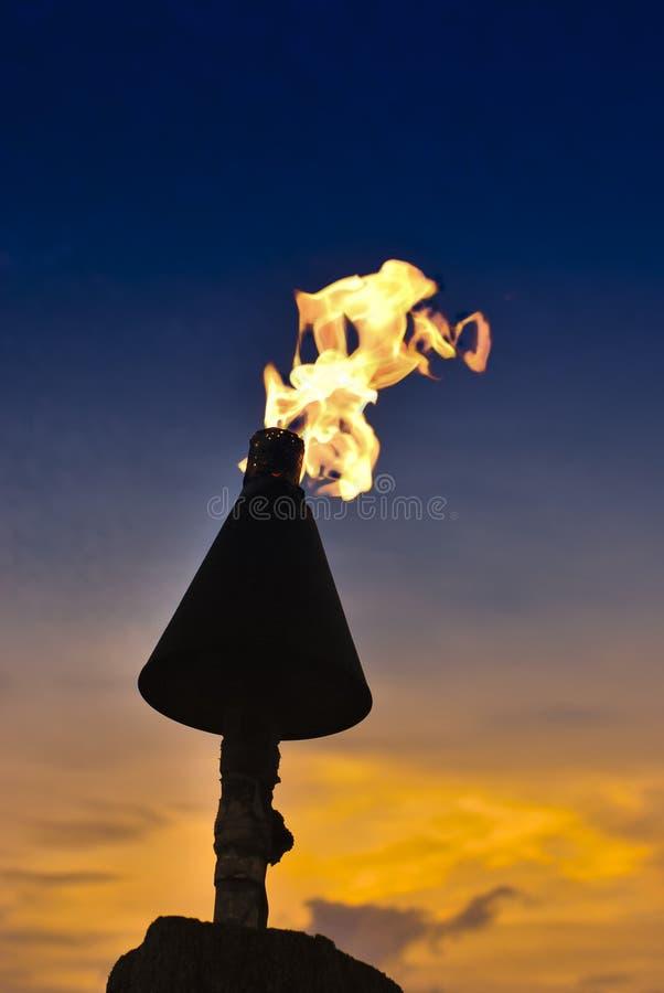 在日落的火焰状火炬在橙色天鹅绒日落下 免版税图库摄影
