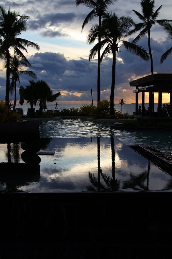 在日落的热带手段, Denarau海岛,斐济 库存照片