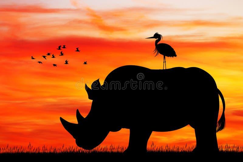 在日落的犀牛剪影 库存例证