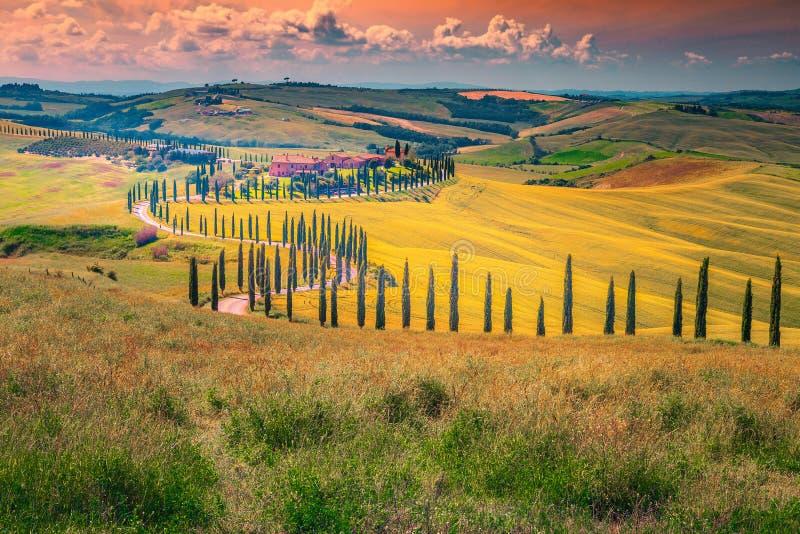 在日落的田园诗托斯卡纳风景与弯曲的农村路,意大利 免版税库存图片