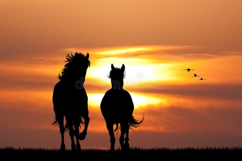 在日落的疾驰的马 向量例证