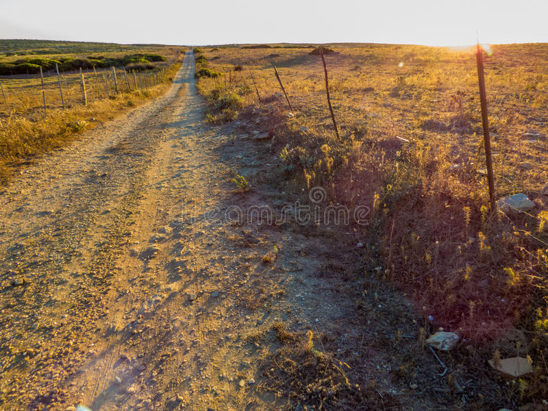 在日落的空的道路 免版税库存照片