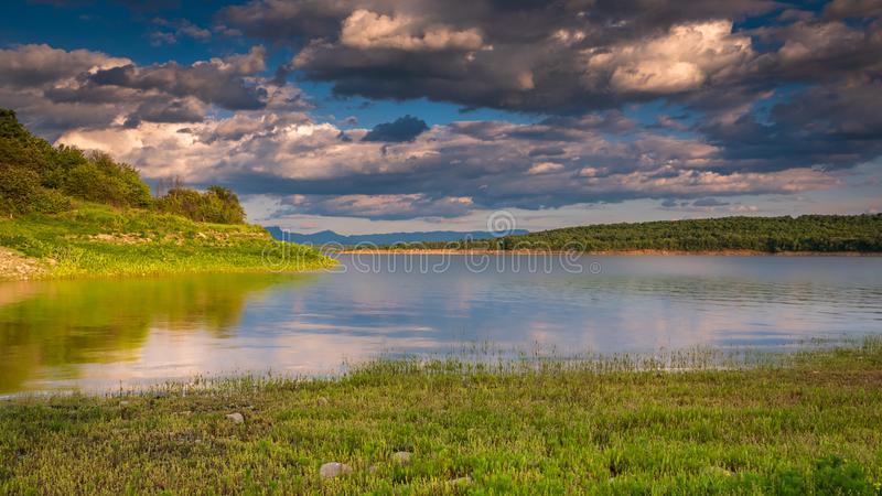 在日落的绿色湖岸 库存图片