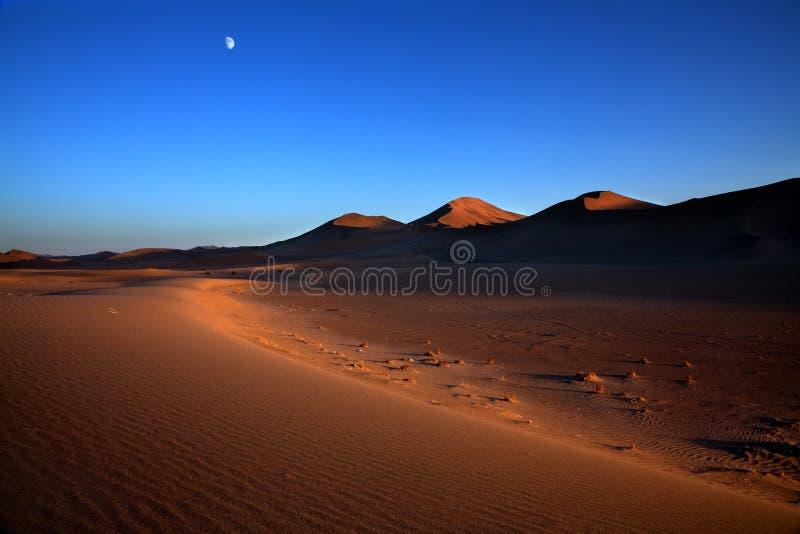 在日落的美好的沙漠风景 免版税库存图片