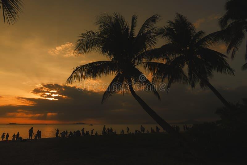 在日落的美好的热带海滩风景 库存图片