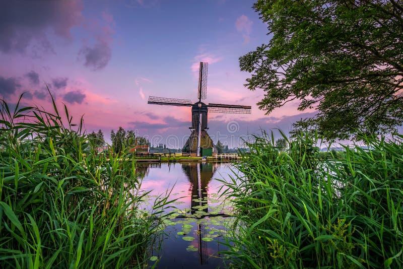在日落的老荷兰风车在小孩堤防,荷兰 免版税库存图片