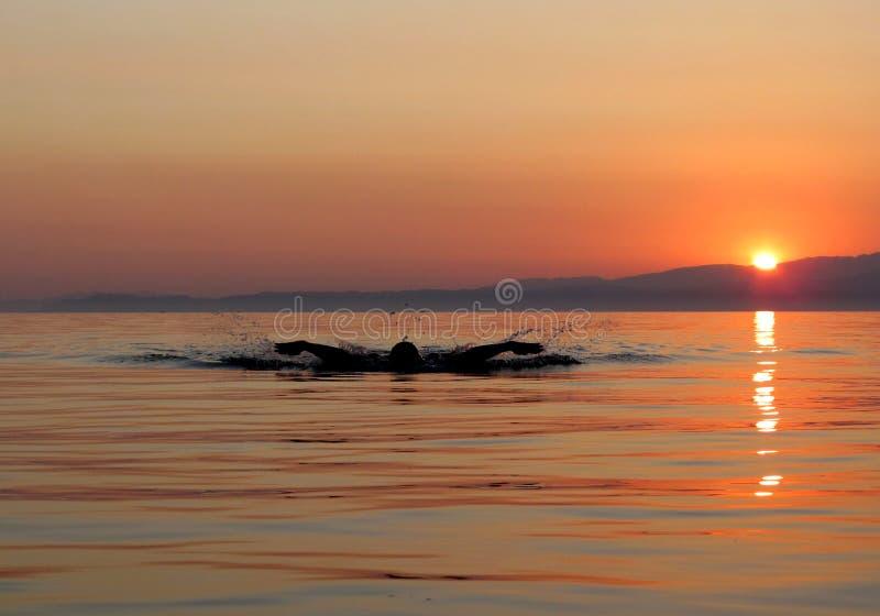 在日落的肌肉年轻人游泳蝴蝶窗框 免版税图库摄影