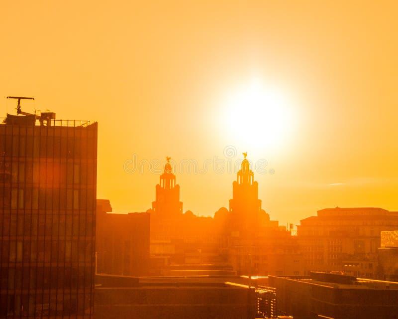 在日落的肝脏大厦,利物浦,英国 图库摄影