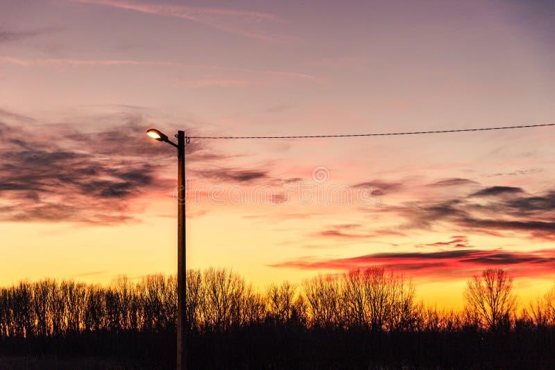 在日落的街灯 免版税图库摄影