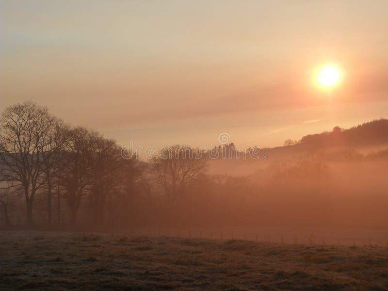 在日落的雾 免版税库存照片