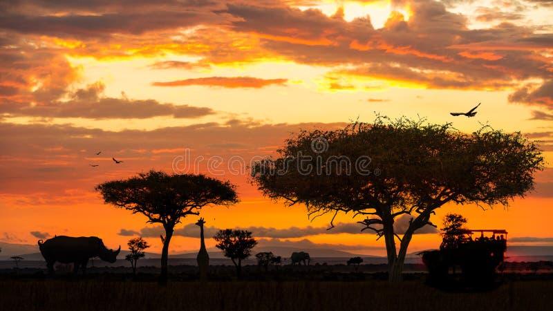 在日落的非洲野生生物徒步旅行队驱动 库存图片