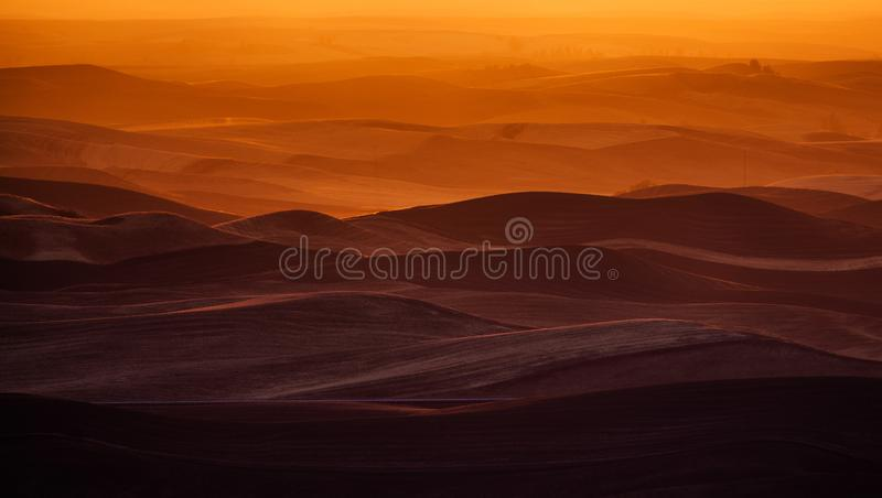 在日落的Palouse风景 库存图片
