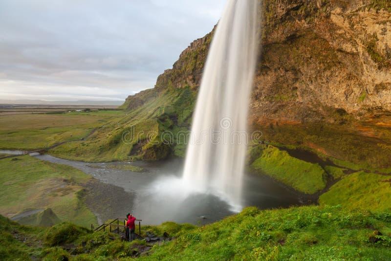 在日落的Seljalandsfoss瀑布,西南冰岛 图库摄影