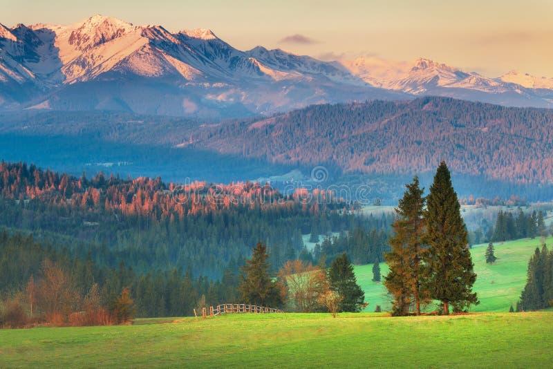 在日落的Tatra山 免版税图库摄影