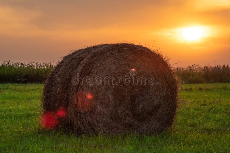 在日落背景的干草捆 免版税库存照片
