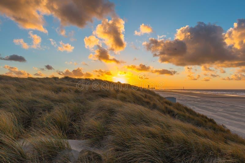 在日落,比利时的沙丘 库存图片